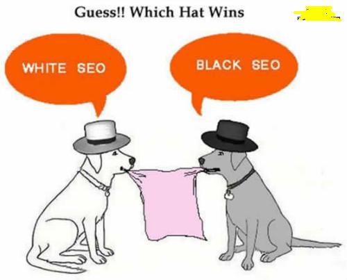 20160522黑帽白帽SEO